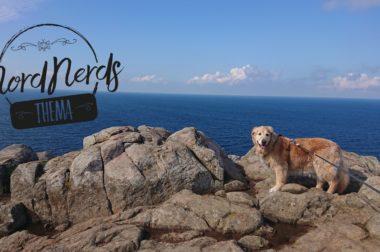 NordNerds Thema: Schweden mit Hund